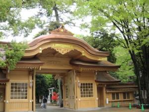 Ookunitama jinjya 2011.4 photo by y★u